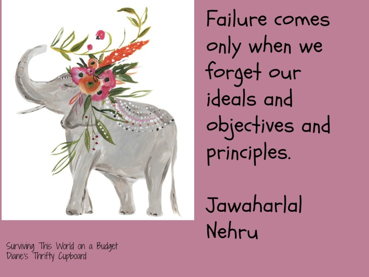 Failure elephant